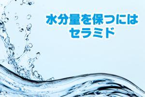 水分量を保つにはセラミド