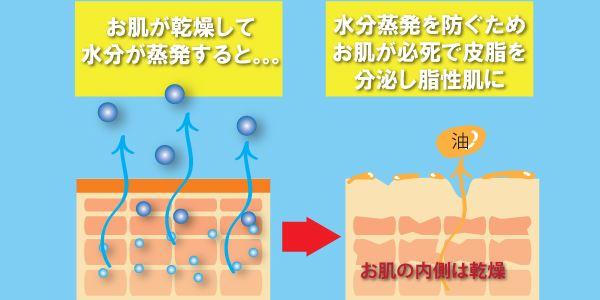 オイリー肌は水分不足でカラカラ状態なので危険信号に皮脂が反応し必要以上の脂が顔面にあふれてしまうから