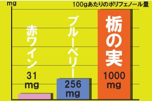 栃の実ポルフェノールの含有量
