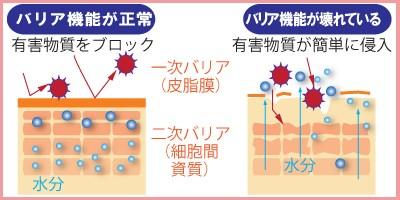 肌バリア機能低下による肌への影響