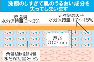 肌のうるおい分布図