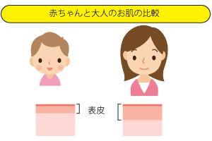 子供の肌と大人の肌の違い