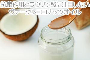 抗菌作用とラウリン酸に注目したいヴァージンココナッツオイル