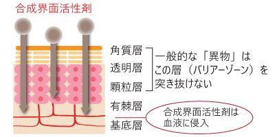 合成界面活性剤の浸透力