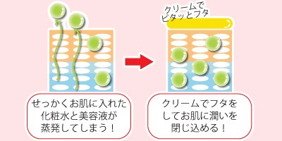 乳液の役割