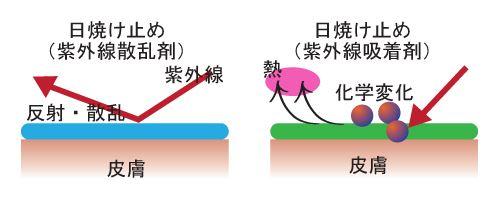 """""""紫外線吸収剤""""と""""紫外線散乱剤""""という2種類のUVアイテムで紫外線のダメージを予防するときの肌のイメージ図"""