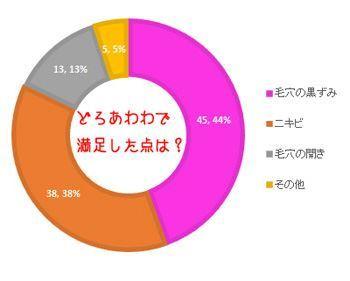 どろあわわ満足した理由調査の円グラフ