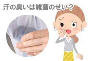 汗の臭いは雑菌のせい?