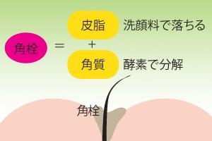 酵素洗顔料の働き