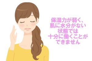 保湿欲が弱く、肌に水分がない状態では十分に働くことができません