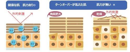 皮膚バリア機能低下による肌への影響