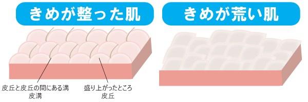 きめが整った肌ときめが洗い肌の比較