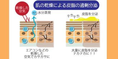 肌の乾燥による皮脂の過剰分泌