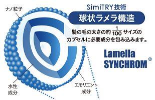 シミトリーの球状ラメラ構造の図