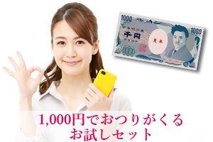 1,000円でおつりがくるお試しセット