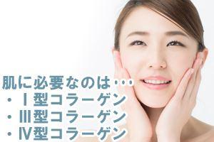肌にとくに必要なのはⅠ型、Ⅲ型、Ⅳ型のコラーゲン