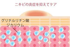 グリチルリチン酸ジカリウムの効能イメージ