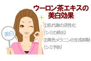 ウーロン茶エキスの美白効果①シミ排出②シミ予防