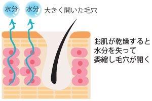 お肌が乾燥すると水分を失って萎縮し毛穴が開く