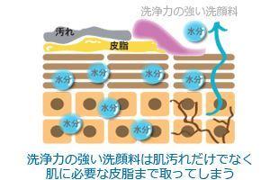 洗浄力の強い洗顔料は肌汚れだけでなく肌に必要な皮脂まで取ってしまう