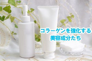コラーゲンを強化する美容成分たち