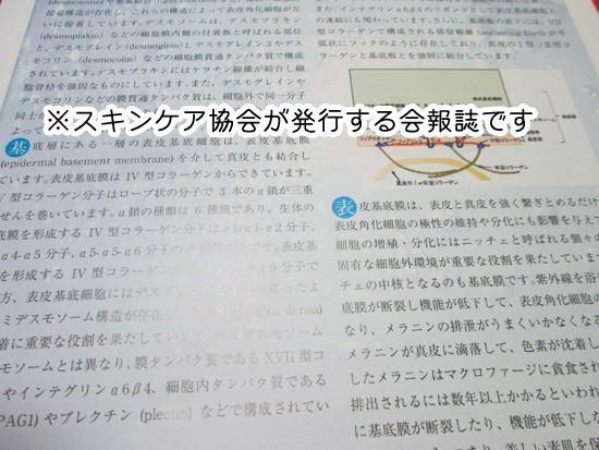一般社団法人日本スキンケア協会 会報誌