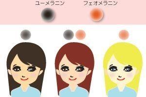 メラニンには、比率により黒色人種(ユーメラニン)、黄色人種(ユーメラニン+フェオメラニン)、白色人種(フェオメラニン)を決めるユーメラニン(黒色)とフェオメラニン(赤黄色)の2種類が存在する