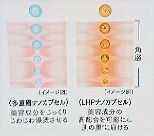 トリニティラインを使えば、2種類の浸透テクノロジーで肌の角質層の奥まで美容成分が届いているのを表す図解