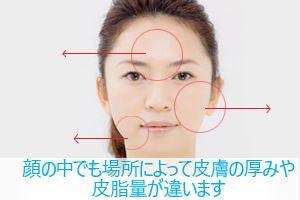 顔の中でも場所によって皮膚の厚みや皮脂量が違います